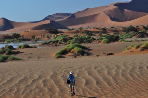 Sossusvlei dunes 4