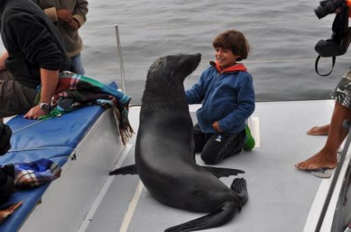 A good seal!