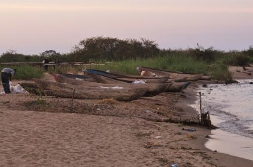 20 Bwotas and a fisherman busy with his nets last night by Lake Malawi.