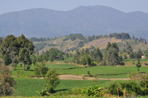Beautiful rolling hills and cultivated lands coming into Tanzania