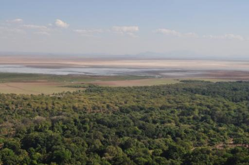 Lake Manyara to Arusha 196-550