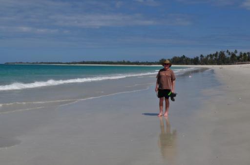 Enjoying walks on Kipepeo beach