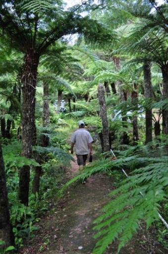 Bvumba Botanical Gardens