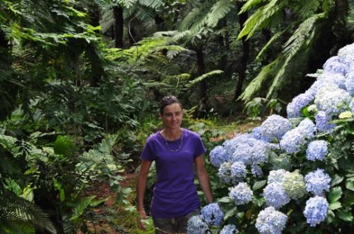 Bvumba Botanical Gardens 195-550
