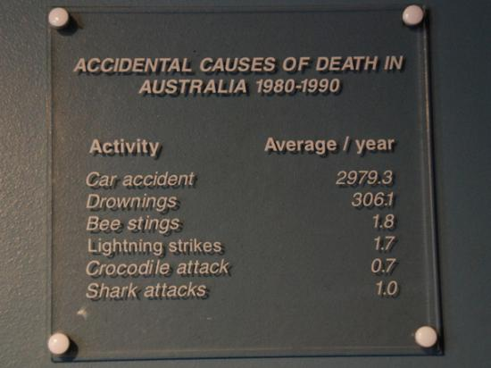 Don't fear sharks