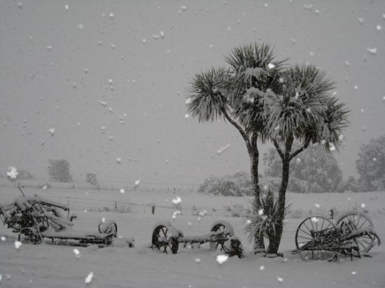 Makarora snow-in