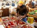 Eel vendor
