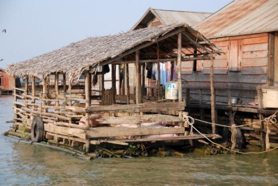 Floating market house