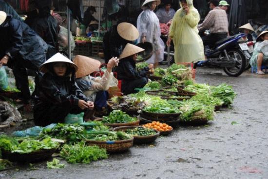 Morning market 1