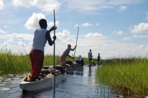 Down the Okavango Delta