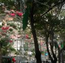 Pretty street decor for Chinese New Year