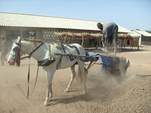 Gambia Travel Blog