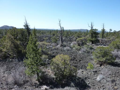 Grants (NM) United States  city pictures gallery : 22. Grants Bandera Crater Lava Clare and Paul's World Trip