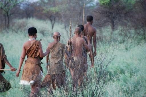 Bushmen Leading Us On Our Walk