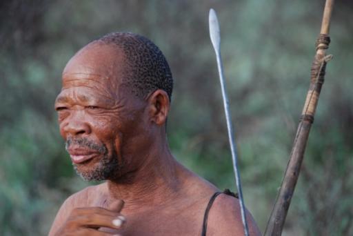 Elder Male Bushmen
