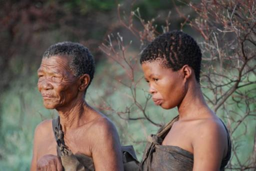 Generations of Bushmen