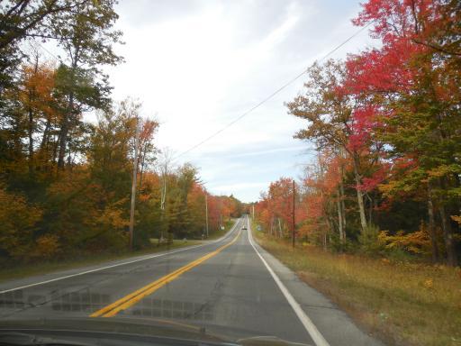 Pretty Backroad Drive