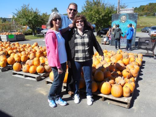 Look At All The Pumpkins!