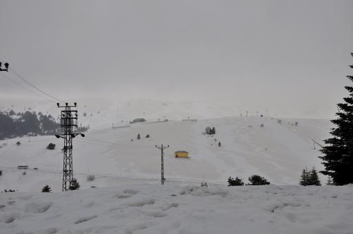 30cm snehu