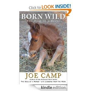 Born Wild by Joe Camp