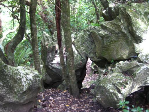 The Rock Forest At Abbey Cave Flat Stanley Around The World