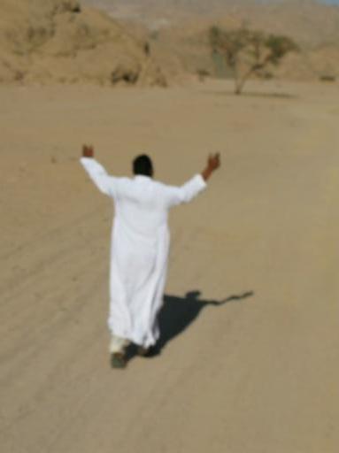 The serenading bedouin