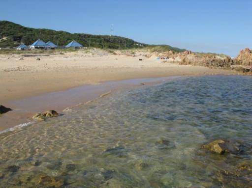 Buffalo Bay Backpackers and Beach