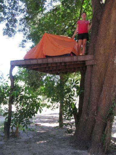 Camping in the canopy