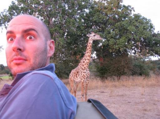Afraid of a giraffe Mike?
