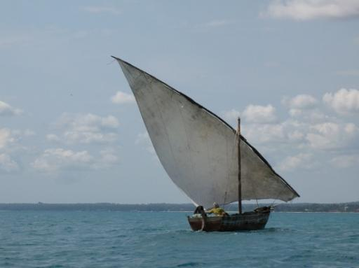 Dhows around Zanzibar