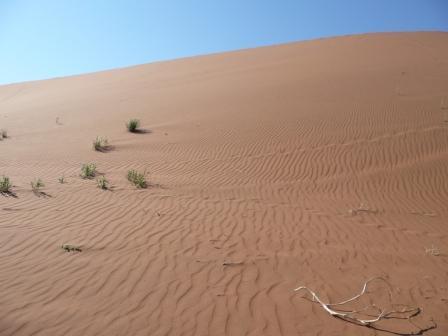 Sossusvlei, Namib Desert