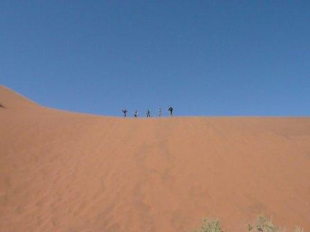 Yes, those people are about to run down the dune