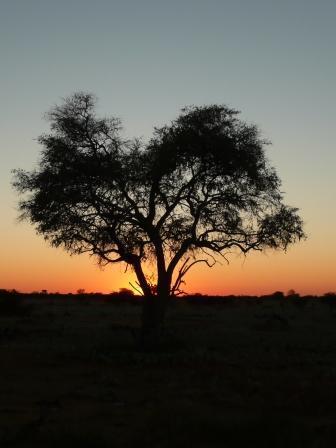 Sun rises over Africa