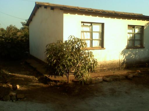 Janets huisje met de mango boom!