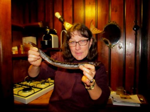 eel snack