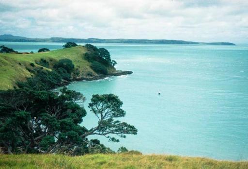 Waiheke - my last day in NZ