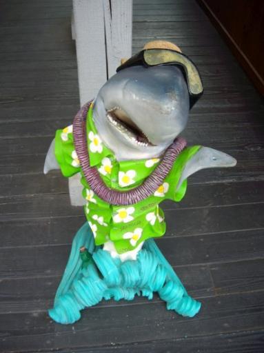 Shark is having a good time...