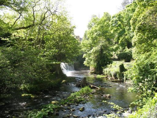 Water of Leith 01