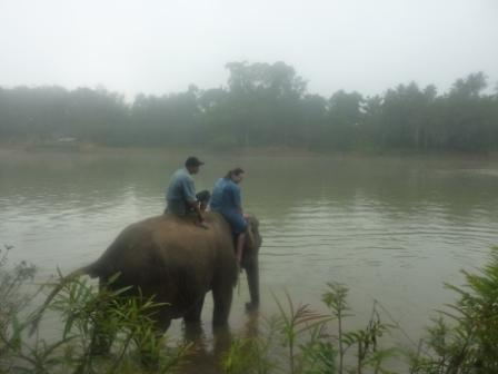 Tong Koun, the mahout and me