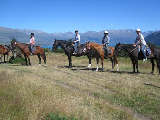 horse trekking above Queenstown NZ