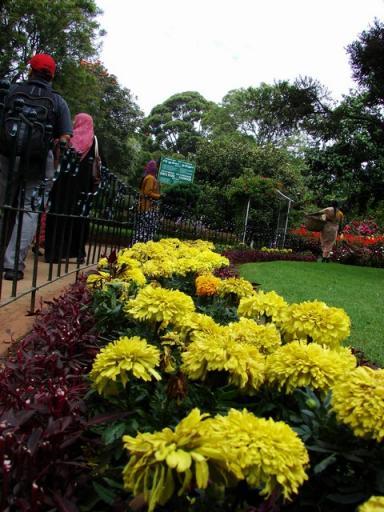 Coonoor 036..various flowers and trees line the  walk  way ..
