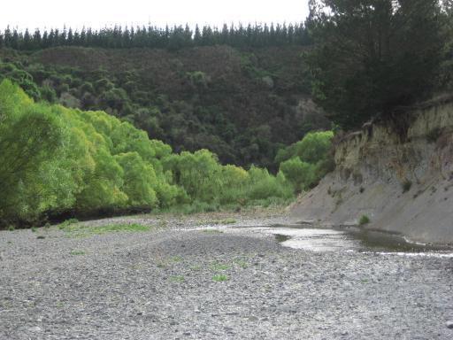 Etwas Ausgetrockneter Fluss Ronja In Neuseeland