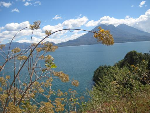 Lake Atitlan 6