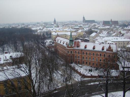 View of Krakow from the Bell tower