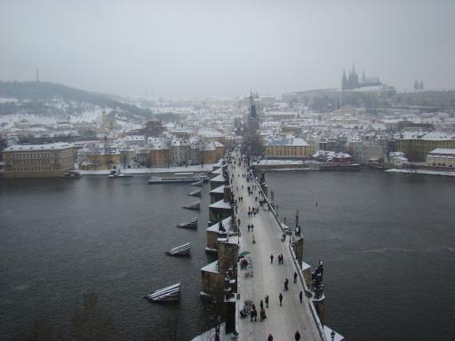 View of charles bridge from the tower