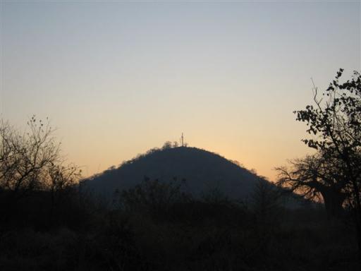 baobab hill, sunrise